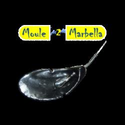 MOULE DE MARBELLA 110 GR...