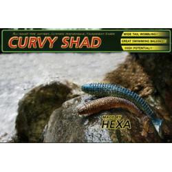 CURVY Shad 3.8